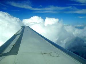Plane_wing-300x225